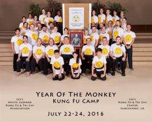 Year of the Monkey Kung Fu Camp